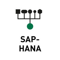 Data-Store-SAP-HANA